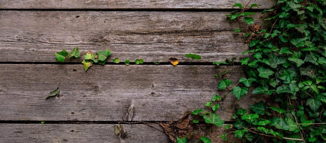 deck-fence-builder